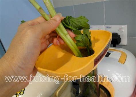 Cilantro Kidney Detox Recipe by Green Apples Romaine Lettuce Asparagus And Cilantro