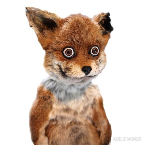 Fox Meme - quot geoff stoned fox taxidermy meme adele morse quot art prints