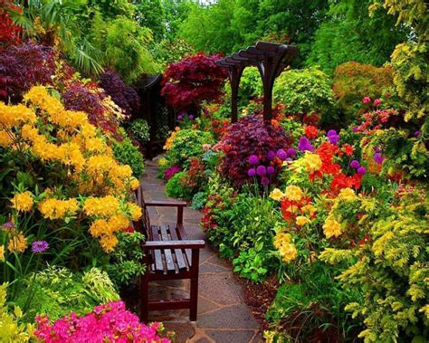 Colorful Flowers Garden Garden Plants Pinterest Colorful Flower Garden