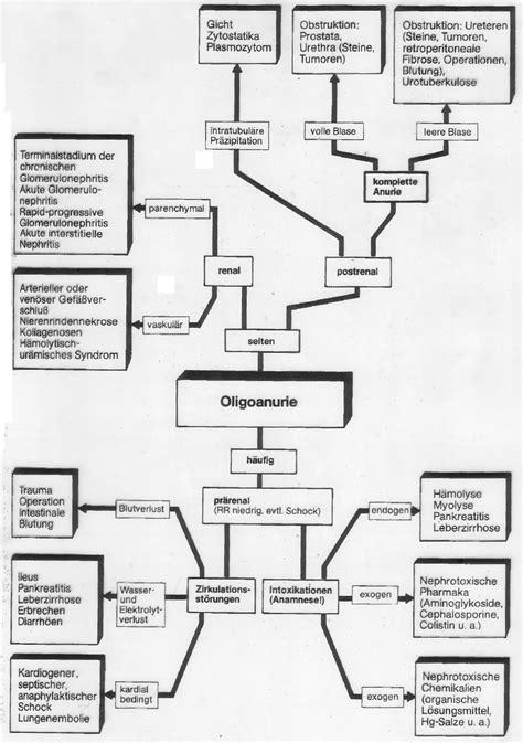 irisdiagnose tabelle die dokumente