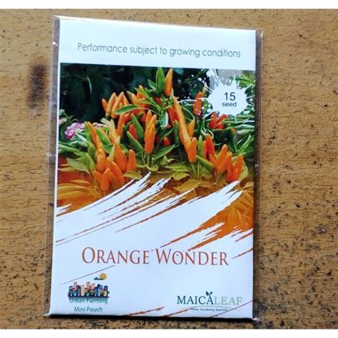 15 Benih Cabe Hijau Pedas Maica Leaf jual benih cabe hias orange