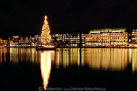 weihnachtsbaum foto alster nachtpanorama hamburg city