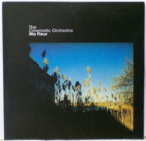 To Build A Home Cinematic Orchestra by Cinematic Orchestra Records Lps Vinyl And Cds Musicstack