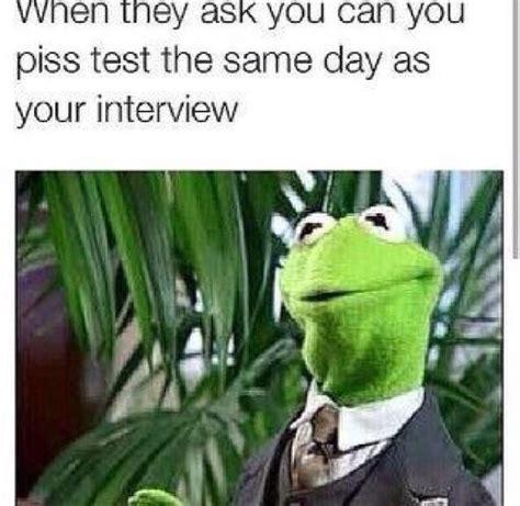 funny kermit  frog memes jokes  nigeria