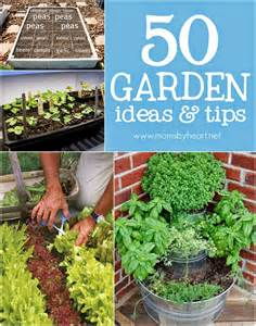 Gardening Tips And Ideas 50 Gardening Ideas Tips Diy Craft Projects