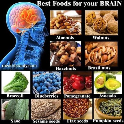 how to feed a brain nutrition for optimal brain function and repair books best foods for your brain health