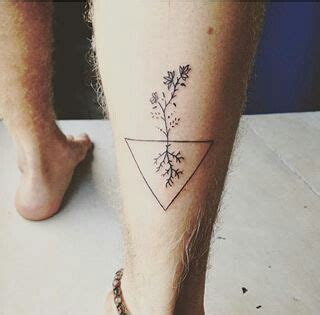 tattoos that mean change a triangle is the scientific symbol for change it also