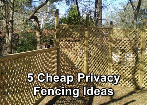 Cheap Fence Ideas For Backyard 5 Cheap Privacy Fencing Ideas Shtf Prepping Homesteading Central