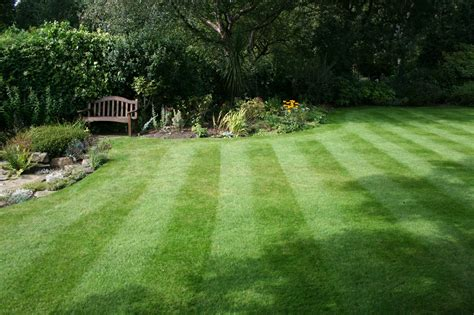 complete lawn care for the south east lawnsone