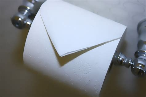 Toilet Paper Folds - or the great toilet paper debate infographic