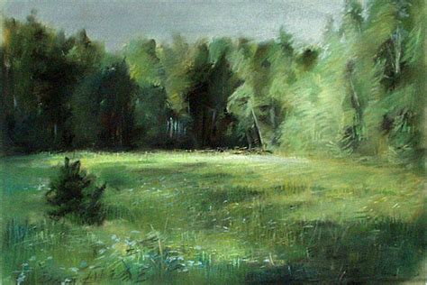 forest glade anna gorban selected landscapes