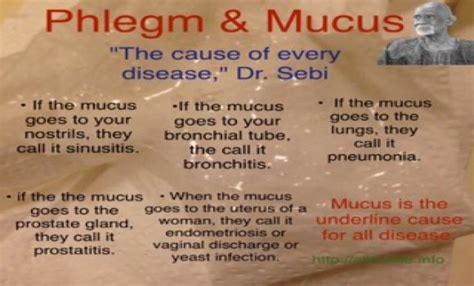 How Can I Order Dr Sebie Mucus Detox by Dr Sebi Mucus Is The Cause Of Every Disease Best Ways To
