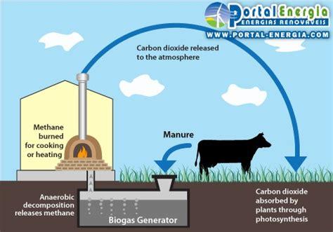 vantagens e desvantagens da energia do biog 225 s