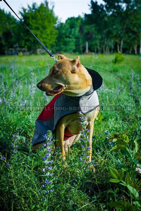 pitbull clothes coat for pitbull warm jacket