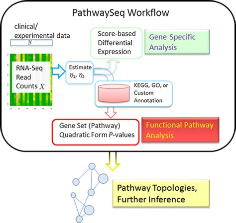 Integrated pathway analysis