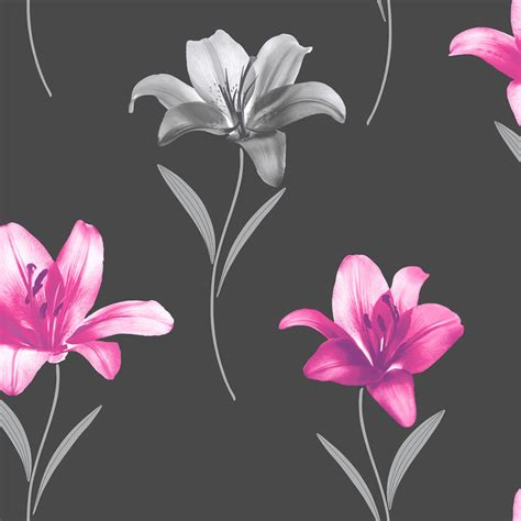 pink wallpaper wilkinsons black and pink wallpaper shop for cheap products and
