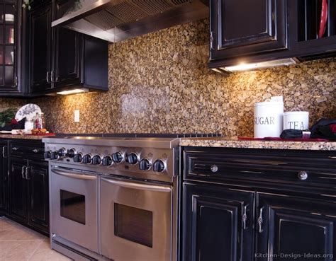 pictures  kitchens traditional black kitchen cabinets