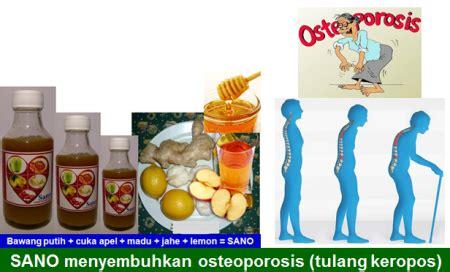 Obat Herbal Sano Herbal Mujarab Sano Dan Fides Manfaat Kencur