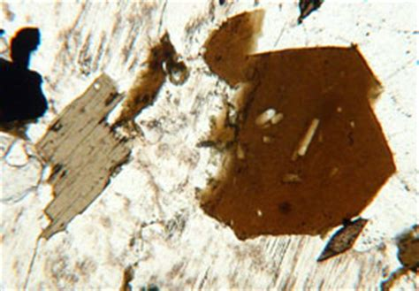 biotite under thin section biotite