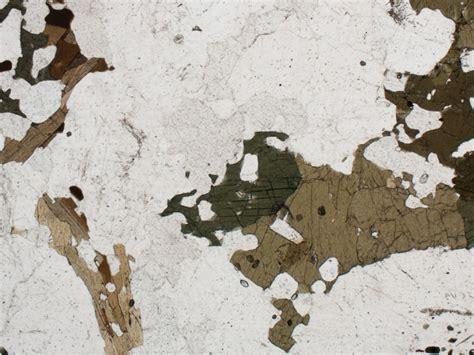 hornblende in thin section geology word of the week p is for pleochroism georneys