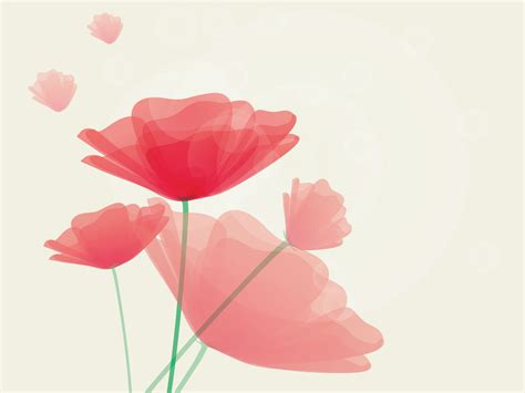 poppy background summer poppy flowers powerpoint templates flowers red