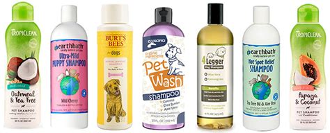 best shoo for dogs with allergies best hypoallergenic hair products the best hypoallergenic shoo