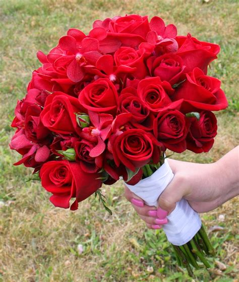 wallpaper bunga untuk kekasih 20 gambar foto bunga mawar merah ayeey com