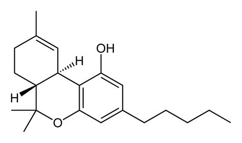bliss molecule similar to thc in cannabis found in