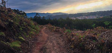camino de santiago pilgrimage el camino de santiago a pilgrimage story onepeterfive