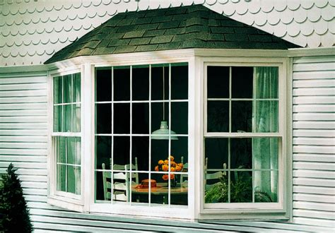 Home Designer Pro Bay Window Lori Gilder