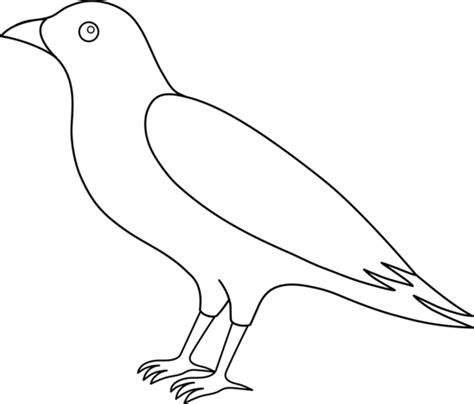 crow bird coloring page colorable crow line art free clip art