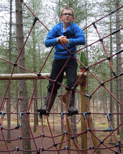 moors valley country park new forest attractions