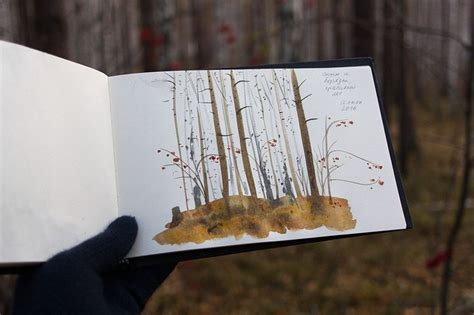 sketchbook ventures 1000 images about showcase on