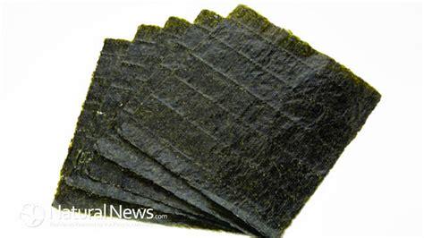 the health benefits of nori the seaweed that wraps sushi