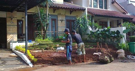 Jasa Tebang Pohon Jakarta Selatan jasa penebangan pohon tukang pangkas pohon