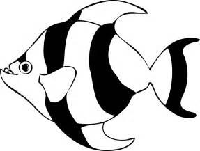black white tropical fish