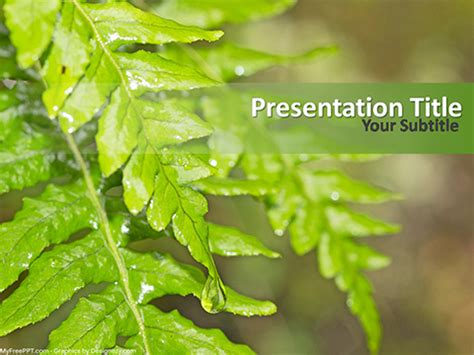 powerpoint themes leaves powerpoint templates leaves free images powerpoint