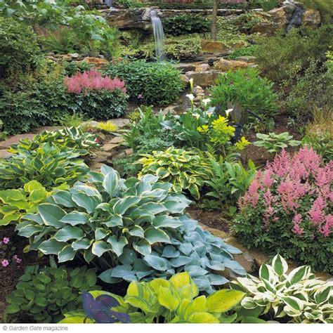 Hosta Garden Ideas Hosta Garden Picmia