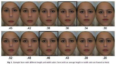 face shape calculator face shape calculator online newhairstylesformen2014 com