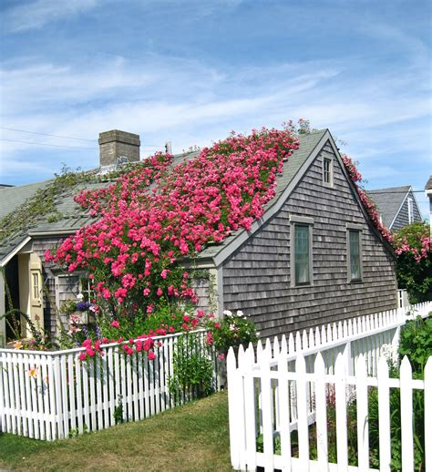 Shingle Style Cottages nantucket cottages and ps on pinterest