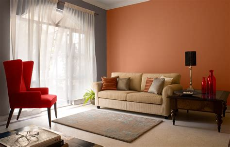 wall paint colors  living room ideas living room