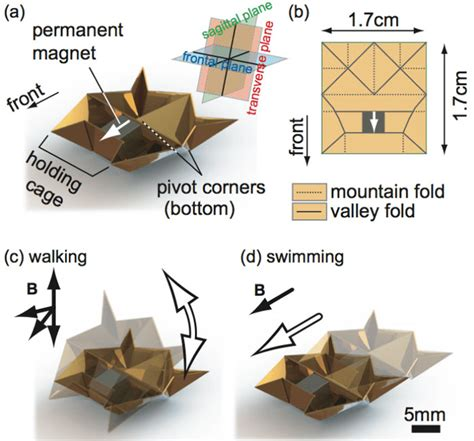 How To Make A Origami Robot - mini origami robot that self folds walks swims digs