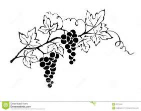 Grape Vine Black And White Clip Art  Galleryhipcom The Hippest sketch template