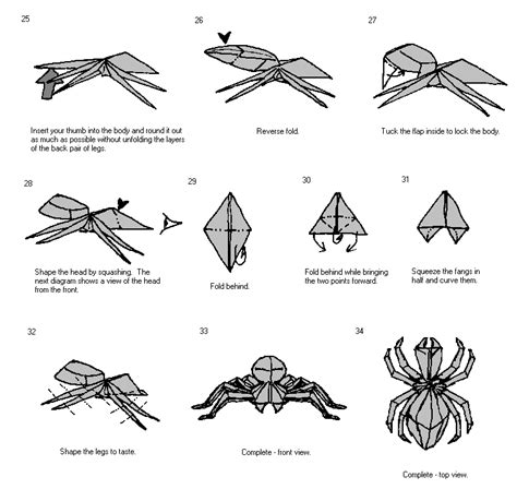 How To Make A Paper Spider - origami spider alfaomega info