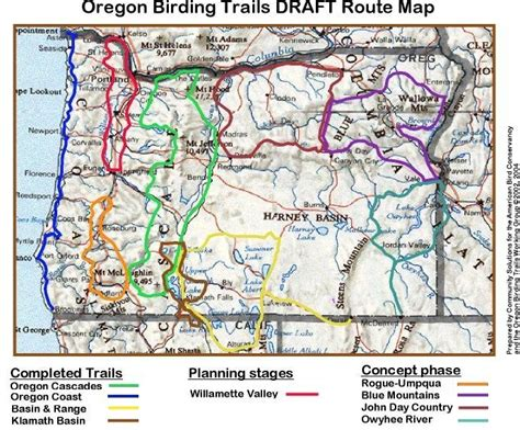 oregon cascades birding trail