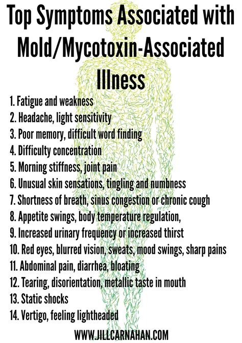 How To Detox After Living In Mold by Is Toxic Mold Exposure The Cause Of Your Symptoms Toxic