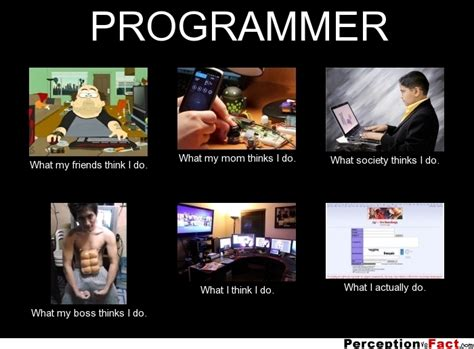 Programmers Memes - ama i m a software programmer and i love it