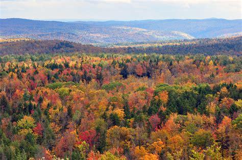 mountain vt file vermont fall foliage hogback mountain jpg