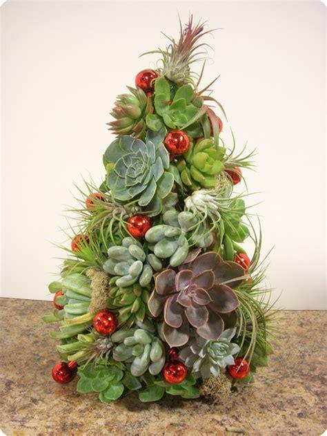 christmas cactus tree cactus page 3 of 7 cactus jungle