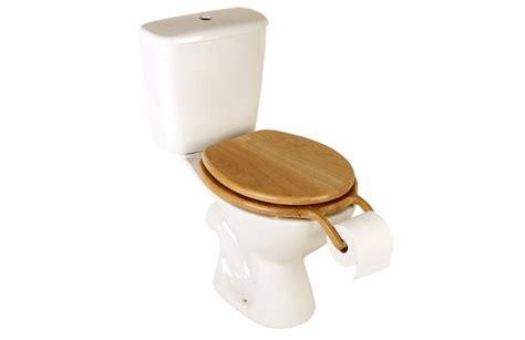 Potty Seat With Handel Toilet Anak Bundacantiq bog standard a surprising toilet seat roll holder by henry franks
